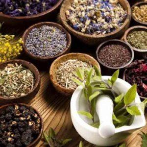دانلود نمونه سوالات گیاهان دارویی